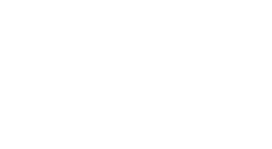 van wrapping service
